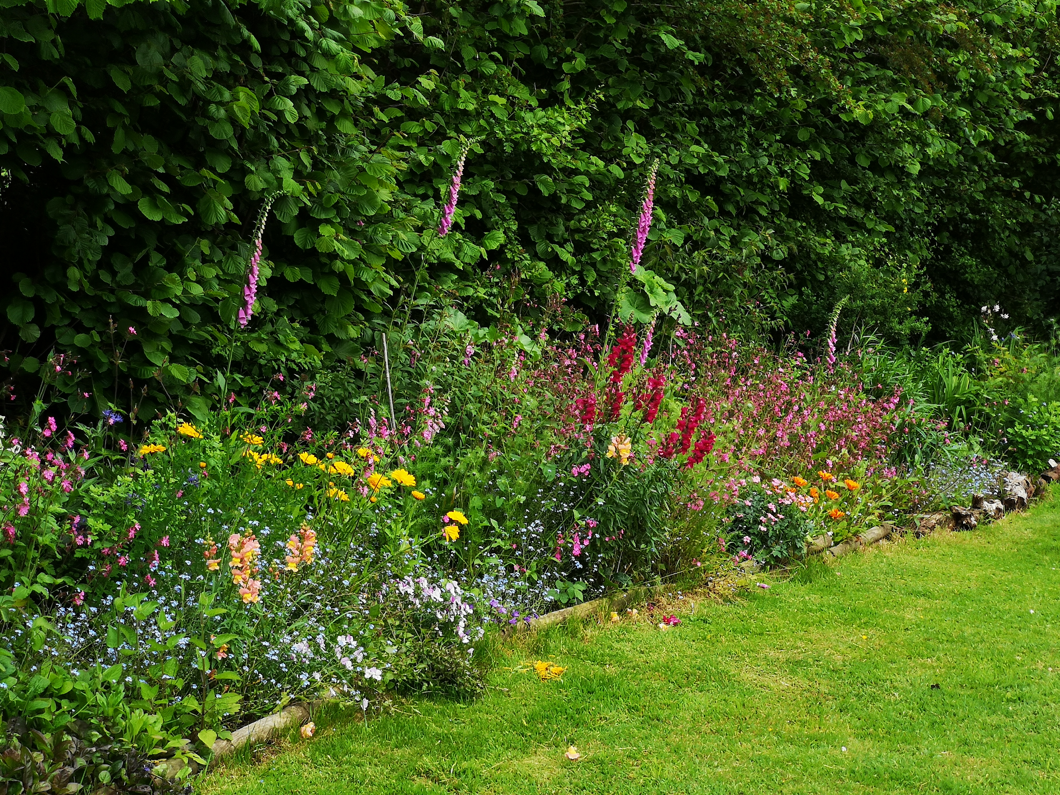 The Orchard border